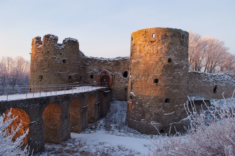 Обложка Копорская крепость
